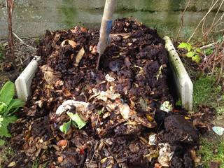 déchets de jardin